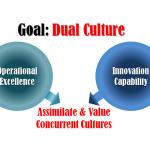 Dual Culture